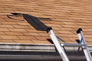 hadley roofing repair pic